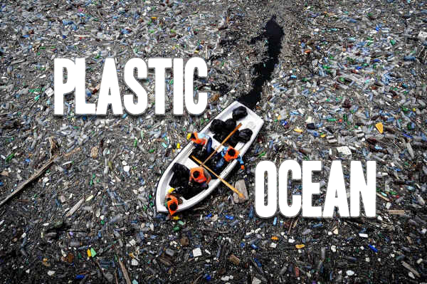 the pacific ocean garbage patch essay The garbage patch is a large mass of debris twice the size of texas that is floating in the pacific ocean (timmer) it is the largest concentration on debris in any ocean and it is what hurts a.